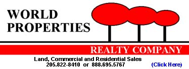 World Properties Realty Company